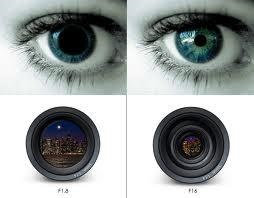 Image, top left - Eye with big pupil, top right - Eye with small pupil. Bottom left camera with a fully open lens, Bottom right - camera with semi-shut lens